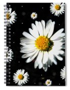 Sunshine In Your Home Spiral Notebook