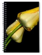 Sunshine In Your Smile Spiral Notebook