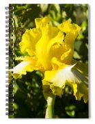 Sunshine Iris Spiral Notebook