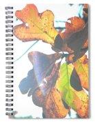 Sunshine Leaves Spiral Notebook