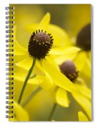 Sunshine On A Cloudy Day Spiral Notebook