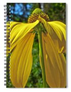 Sunshine On My Shoulders Spiral Notebook