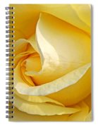 Sunshine Rose Spiral Notebook