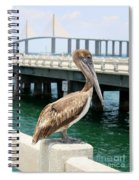 Sunshine Skyway And Pelican Spiral Notebook