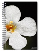 Sunshine Smile Spiral Notebook