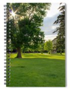Sunshine Through The Trees Spiral Notebook