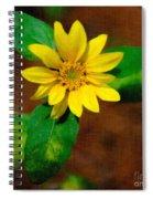 Sunshine Yellow Spiral Notebook