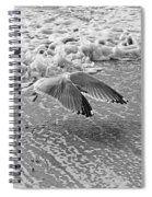 Surf And Wings Spiral Notebook