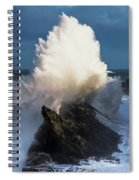 Surf Erupts On The Rocks At Shore Acres Spiral Notebook