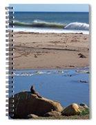 Surf Watching Squirrel Spiral Notebook