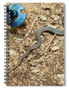 Surprise On Mcdonald Creek Trail In Glacier Np-mt Spiral Notebook
