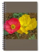 Surprised Poppies Spiral Notebook