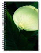 Surreal Peace Lily Spiral Notebook