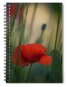 Surrealistic Red Spiral Notebook