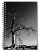 Survival Tree Spiral Notebook