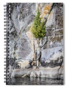 Surviving The Elements Spiral Notebook