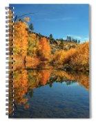 Susan River 11-3-12 Spiral Notebook
