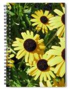 Susans Black Eye #1 20140831 Spiral Notebook
