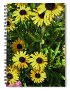 Susans Black Eye #2 20140831 Spiral Notebook