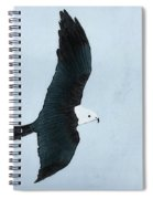 Swallow Tailed Kite Spiral Notebook