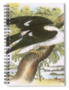 Swallow-tailed Kite Spiral Notebook