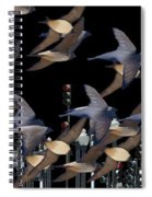 Swallows In The City Spiral Notebook