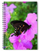 Swallowtail Spiral Notebook