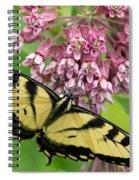 Swallowtail Notecard Spiral Notebook