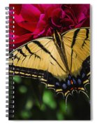 Swallowtail On Peony Spiral Notebook