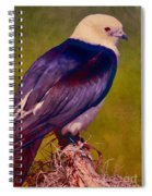 Swallowtail Pose Spiral Notebook