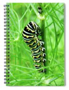 Swallowtail To Be Spiral Notebook