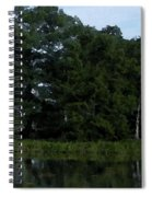 Swamp Cypress Trees Digital Oil Painting Spiral Notebook