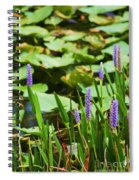 Swamp Flowers  Spiral Notebook