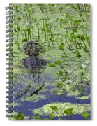 Swamp Gator Spiral Notebook