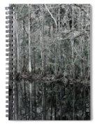 Swamp Greens Spiral Notebook