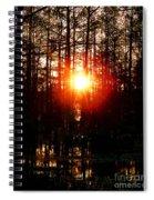 Swamp Light Spiral Notebook