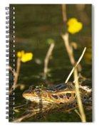 Swamp Muscian Spiral Notebook