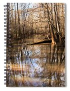 Swamp Reflections Spiral Notebook