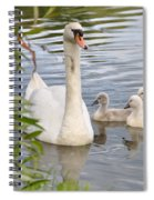 Swan And Chicks Spiral Notebook