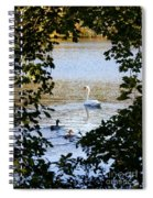 Swan And Ducks Through Trees Spiral Notebook