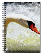 Swan - Beautiful - Elegant Spiral Notebook