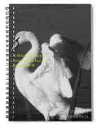 Swan Black And White Spiral Notebook