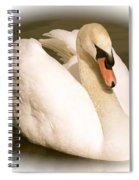 Swan Cameo In Sepia Spiral Notebook