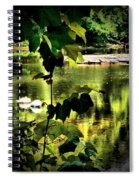 Swan Dive Spiral Notebook