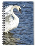 Swan Feather Spiral Notebook