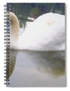 Swan Reflection Spiral Notebook