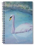 Swan Study Spiral Notebook