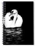 Swan White On Black Spiral Notebook