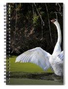 Swan Wings Spread Spiral Notebook