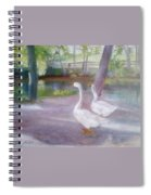 Swans At Smithville Park Spiral Notebook